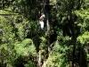 ziplining-tsitsikama