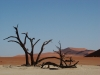 deadvlei-nambia