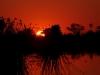 Botswana Wild Camping Safaris