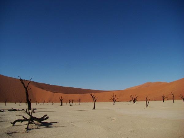 Deadvlei, Namib desert, Sossusvlei, Sossusvlei accommodation, tours Namibia