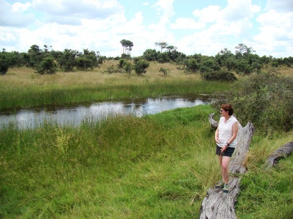 guided tours botswana, custom safaris, tailor made wildlife trips